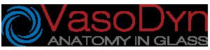 Vasodyn | Anatomy in Glass